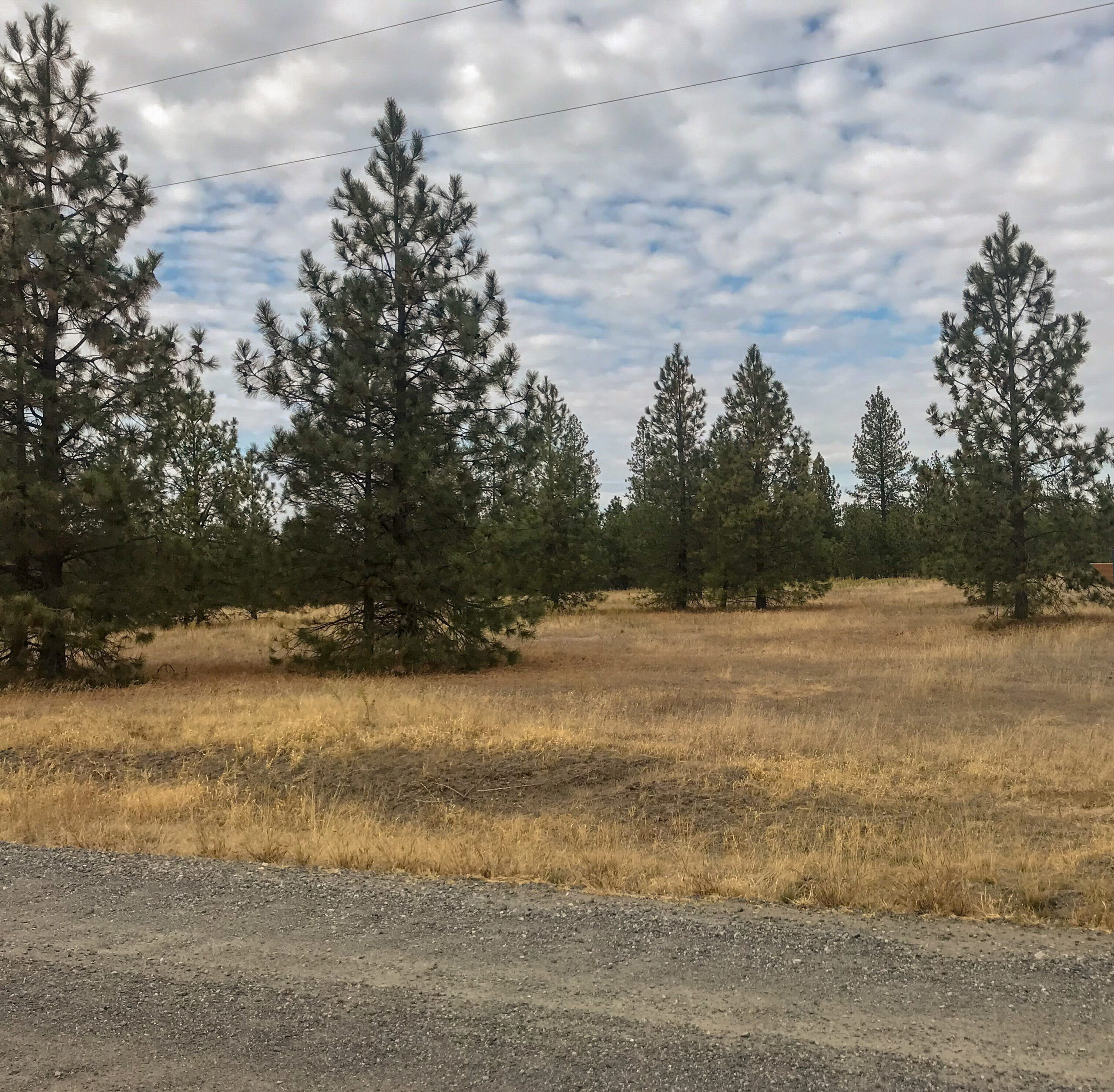 10 acre lot in Timber Valley Estates